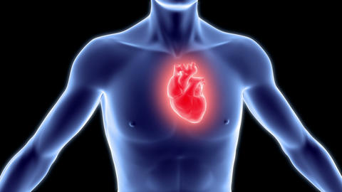 Human body with heart Stock Video Footage