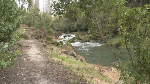 walk along stream Stock Video Footage