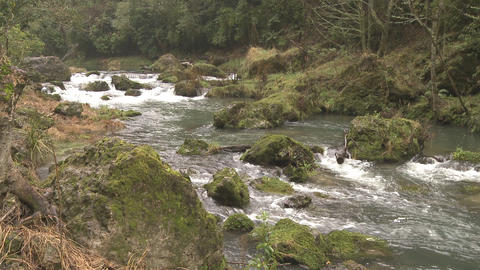 rain falls over stream Stock Video Footage