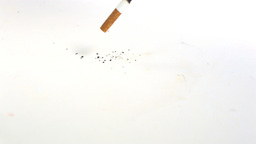 Cigarette filling on the floor on white background Footage
