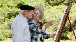 Old couple painting in the park Footage
