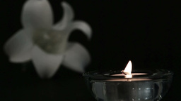 Candle blowing out beside white lily Footage
