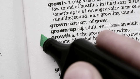 Growth highlighted in green Live Action