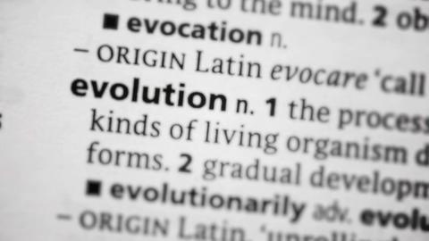 Focus on evolution Footage