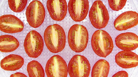 Time-lapse of drying tomato vegetable 7a1, top vie Live Action