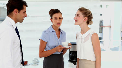 Businesswomen chatting and meeting new staff member Live Action