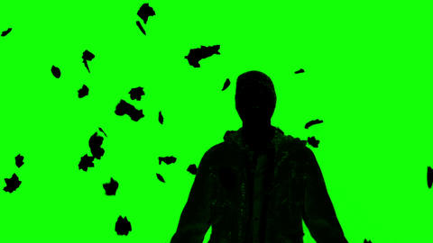 Silhouette of a man under falling leaves on green  Footage