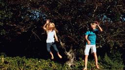 Siblings bouncing on a trampoline Footage