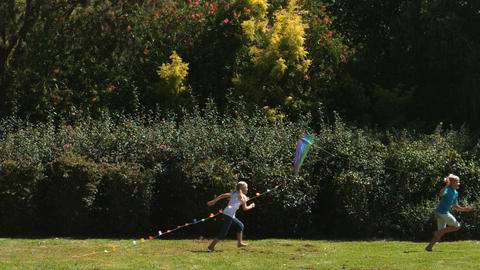 Siblings having fun in a park with a kite Footage