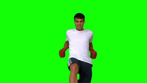 Handsome boxer performing a high kick on green screen Live Action