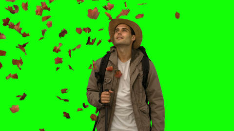 Man standing under leaves falling on green screen Footage