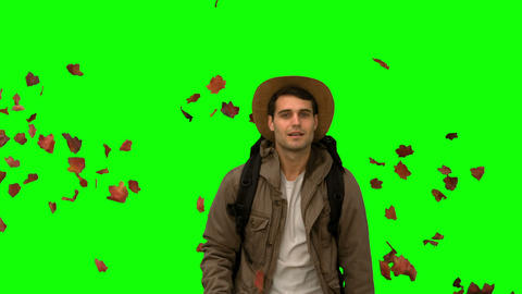 Man walking under leaves falling on green screen Footage