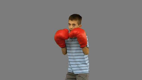 Little boy with boxing gloves boxing on grey screen Footage