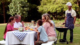 Happy family eating in a park Footage