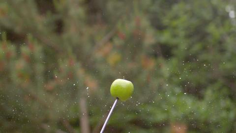 Arrow shooting through an apple Footage