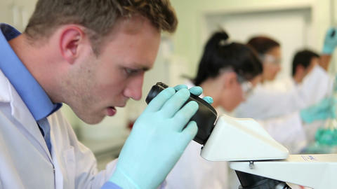 Team of science students working in the laboratory Footage