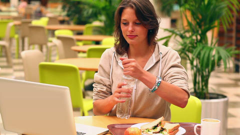 Focused student studying while having lunch in canteen Footage