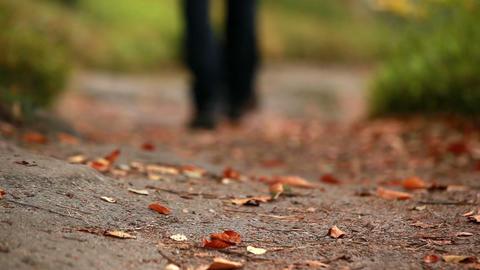 Man walking along a leafy path Footage