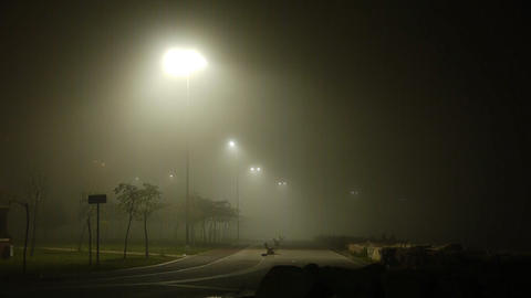 Foggy weather at night street park Stock Video Footage