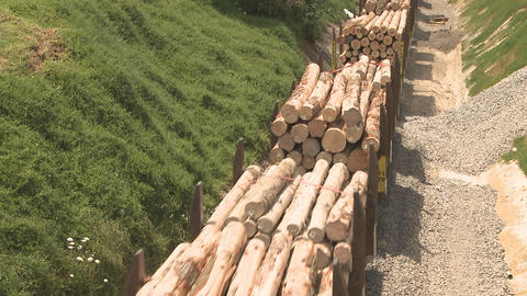 Train hauling logs Footage