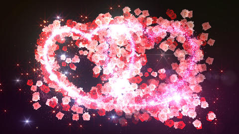Heart Glitter 2 Rose DF3 Stock Video Footage