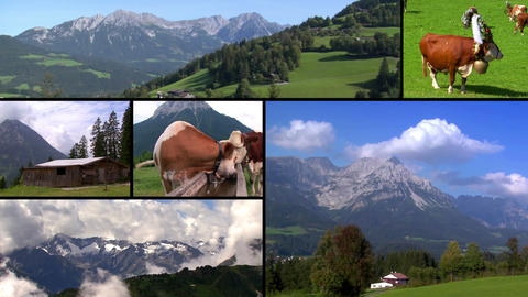 austria alps monatge Stock Video Footage
