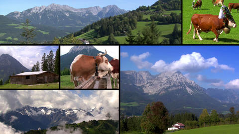 austria alps monatge Stock Video Footage