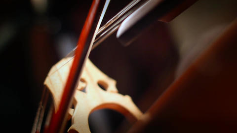 Cello 29 Stock Video Footage