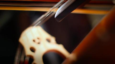 Cello 29 Stock Video Footage