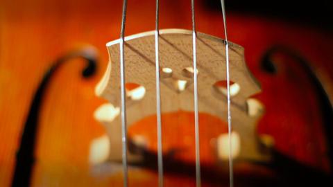 Cello 31 Stock Video Footage