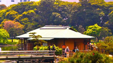 Japanese Garden ARTCOLRED 06 Footage