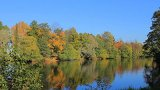 Autumn Forest And River stock footage