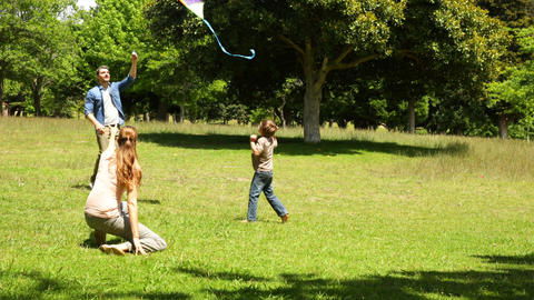 Little boy and parents flying a kite in the park Footage