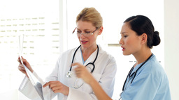 Two medical workers looking over xray Stock Video Footage