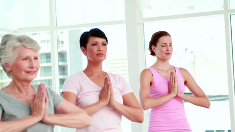 Women at a yoga class in tree pose pose Stock Video Footage