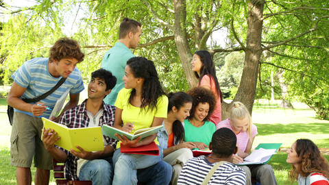 Cheerful students reading and chatting together outside... Stock Video Footage
