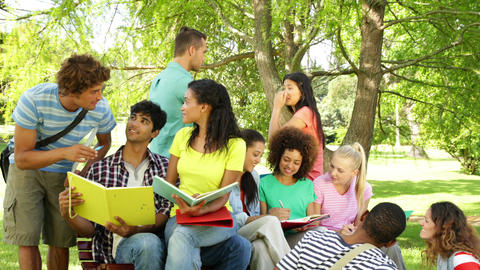 Cheerful students reading and chatting together outside on campus Footage