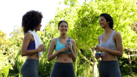 Fit group of friends chatting in the park Stock Video Footage