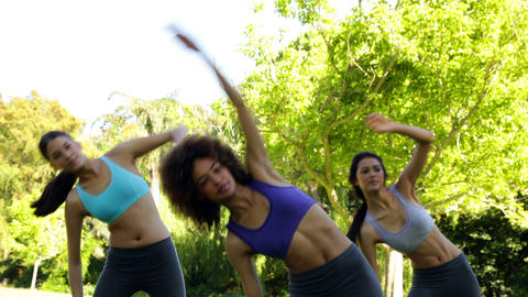 Fit group stretching in the park Stock Video Footage