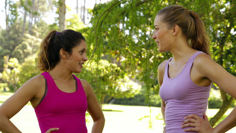 Fitness friends chatting before working out in the park Stock Video Footage