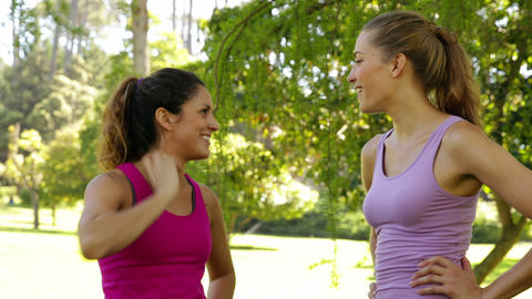 Fitness friends chatting before working out in the park Footage