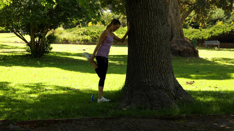 Runner stretching her legs leaning against tree Stock Video Footage