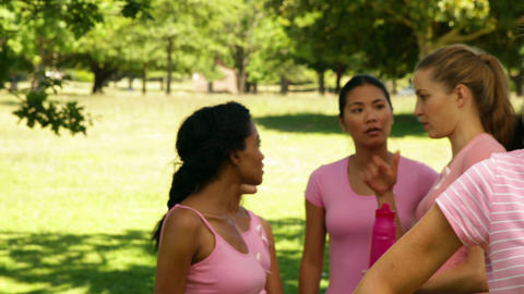 Activists for breast cancer awareness in the park Stock Video Footage