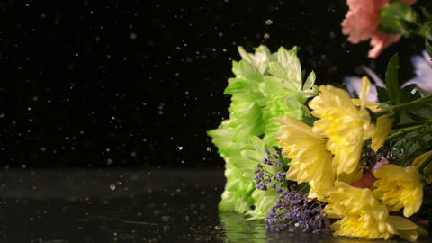 Bouquet of flowers falling onto wet black surface Stock Video Footage