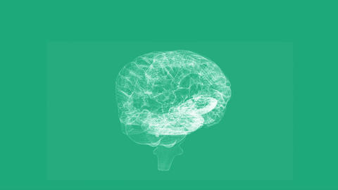 Revolving Transparent Human Brain Graphic stock footage