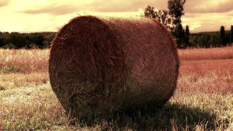 4 K Hay Bale on Harvested Grain Field 5 stylized Footage
