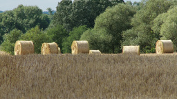 4 K Hay Bales in Summer Heat 1 heat mirage Footage