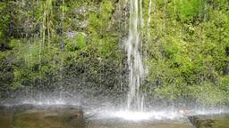 falling water Footage