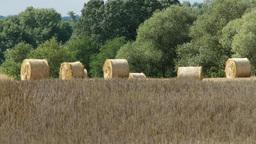 Hay Bales in Summer Heat 1 heat mirage Footage