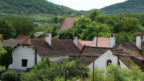 Kali Basin Hungary Summer 8 village Footage